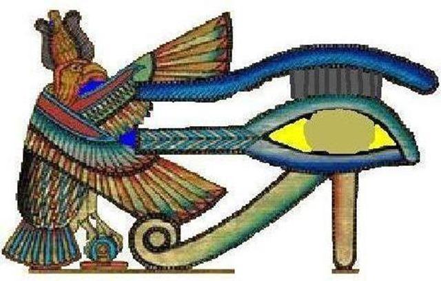 14 eye and bird jpg